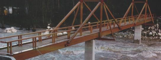 Brücke Schütterbadsteg, Unken